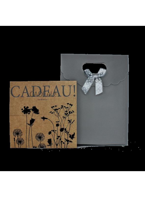 Carte cadeau Axane Annemasse/Annecy
